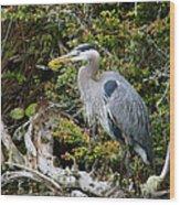 Great Blue Heron On Log Wood Print