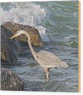 Great Blue Heron On The Prey Wood Print