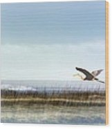 Great Blue Heron - Orange Beach Alabama Wood Print