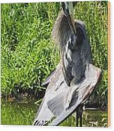 Great Blue Heron Yoga Wood Print