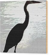 Great Blue Herons Nightside Wood Print