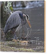 Great Blue On The Clinch River II Wood Print