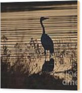 Great Blue Silhouette Wood Print
