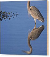 Great Blue Wading Wood Print