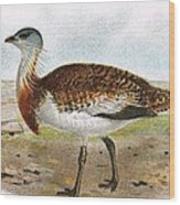 Great Bustard Wood Print