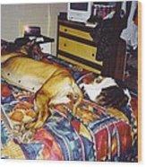 Great Dane And Cat Wood Print