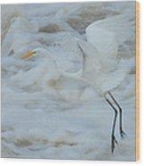 Egret Above Cloud Or Water Wood Print