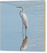 Great Egret And Reflection Wood Print