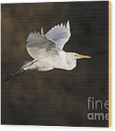 Great Egret Flying By Wood Print