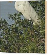 Great Egret In A Tree Wood Print