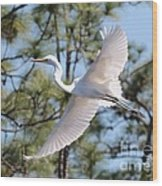 Great Egret Spirit Wood Print