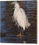 Great Egret Walking On Water Wood Print