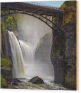 Great Falls Mist Wood Print