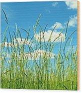 Great Fields Wood Print