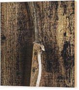 Great Grandpa's Knife Wood Print