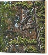 Great Grey Freefall Wood Print