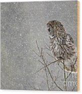 Great Grey Hunter Wood Print
