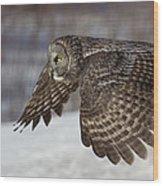 Great Grey Owl In Flight Wood Print by Jakub Sisak