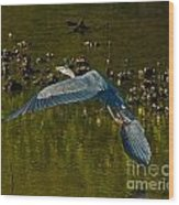 Great Heron Over Oyster Beds Wood Print