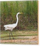 Great Heron Wood Print
