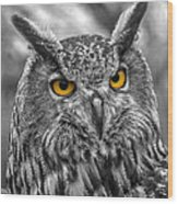 Great Horned Owl V9 Wood Print