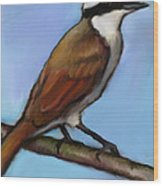 Great Kiskadee Bird Wood Print