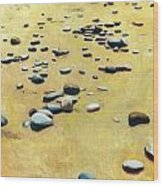 Great Lakes Triptych 2 Wood Print by Michelle Calkins