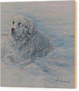 Great Pyrenees Dog Wood Print