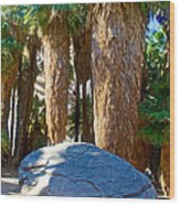 Great Sliding Rock In Lower Palm Canyon In Indian Canyons Near Palm Springs-california Wood Print
