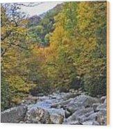 Great Smoky Mountains Creek 3 Wood Print