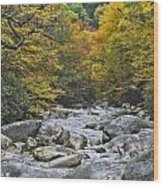 Great Smoky Mountains Creek 4 Wood Print