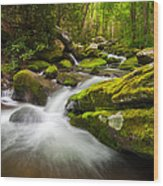 Great Smoky Mountains Gatlinburg Tn Roaring Fork - Gift Of Life Wood Print by Dave Allen