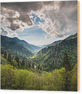 Great Smoky Mountains Landscape Photography - Spring At Mortons Overlook Wood Print by Dave Allen