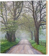 Great Smoky Mountains National Park Cades Cove Country Road Wood Print by Dave Allen