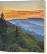 Great Smoky Mountains National Park - Morning Haze At Oconaluftee Wood Print by Dave Allen