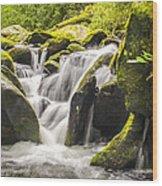 Great Smoky Mountains Tn Roaring Fork Motor Nature Trail Waterfall Wood Print