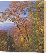 Great Smoky Mts From Blue Ridge Pkwy Wood Print