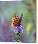 Great Spangled Fritillary Wood Print