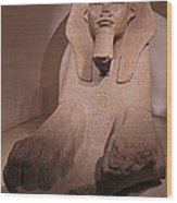Great Sphinx At Musee Du Louvre Wood Print