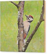 Great Spotted Woodpecker Wood Print