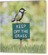 Great Tit On A Keep Off The Grass Sign Wood Print by Tim Gainey