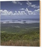 Great View On Top Of Cadilac Mountain Wood Print