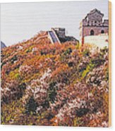 Great Wall In Springtime Wood Print