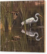 Great White Egret And Mallard Flight Sunrise Reflection Wood Print