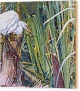 Great White Heron Sanctuary Wood Print