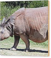 Greater One-horned Asian Rhino Wood Print