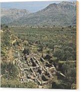 Greece. Peloponnese. Laconia. Sparta Wood Print