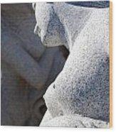 Greek Statues Wood Print