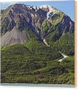 Green Alaska Wood Print