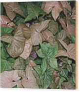 Green And Brown Leaves Wood Print